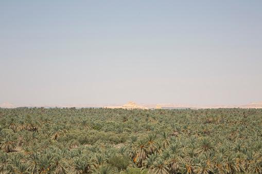 El Siwa「Siwa Oasis, Western Desert, Egypt」:スマホ壁紙(9)