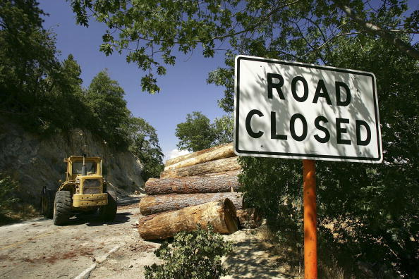 Plant Bark「More Than 2,000 Miles Of Fire Access Roads Damaged In Southern California」:写真・画像(10)[壁紙.com]