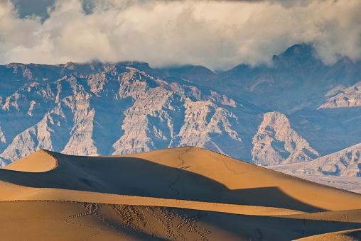 グレープバイン山「夕暮れ時のメスキートフラット砂丘」:スマホ壁紙(12)