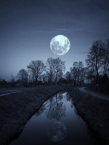 Moon「Night in a Park with Full Moon」:スマホ壁紙(18)