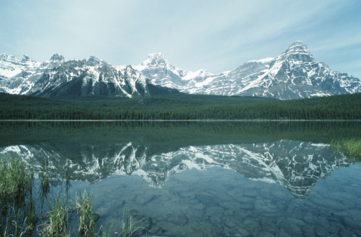 Boreal Forest「Chephren Lake in the Canadian Rockies」:スマホ壁紙(5)