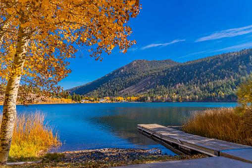 Aspen Tree「Autumn at Gull Lake along the June Lake Loop in Californian Sierra Nevada, CA」:スマホ壁紙(11)