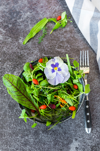 Fennel「Bowl of wild-herb salad with edible flowers, cranberries and wolfberries」:スマホ壁紙(5)