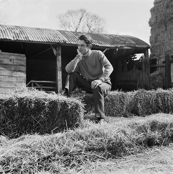 Haystack「Graham Thorner」:写真・画像(18)[壁紙.com]