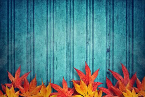 かえでの葉「秋の背景」:スマホ壁紙(3)