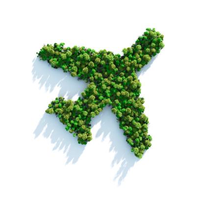 Reforestation「Green Plane」:スマホ壁紙(19)