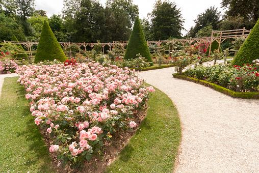 Footpath「Bois de Boulogne, Paris, France」:スマホ壁紙(2)