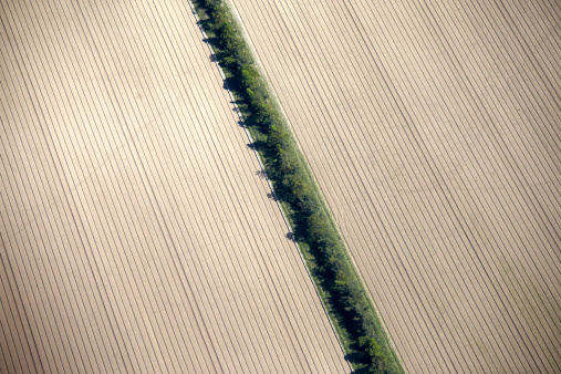 Plowed Field「Abstract aerial view of hedge in ploughed field」:スマホ壁紙(3)