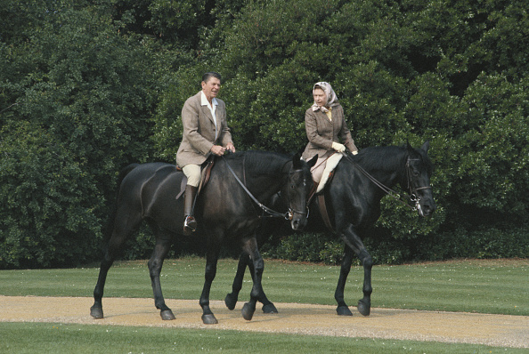Horse「Queen And President」:写真・画像(8)[壁紙.com]