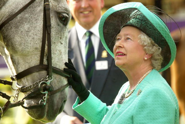 Horse「UK: Royal Windsor Horse Show - Day Three」:写真・画像(0)[壁紙.com]