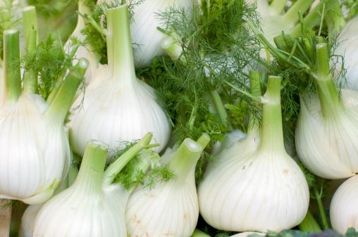Piedmont - Italy「Fennel on market stall, Turin, Italy」:スマホ壁紙(9)