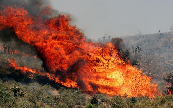 Grass「Wildfires Burn In Nevada」:写真・画像(5)[壁紙.com]