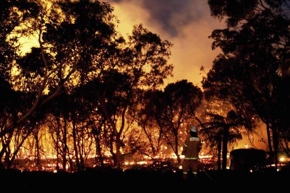 New South Wales「Bushfires Threaten Homes North Of Sydney」:写真・画像(15)[壁紙.com]