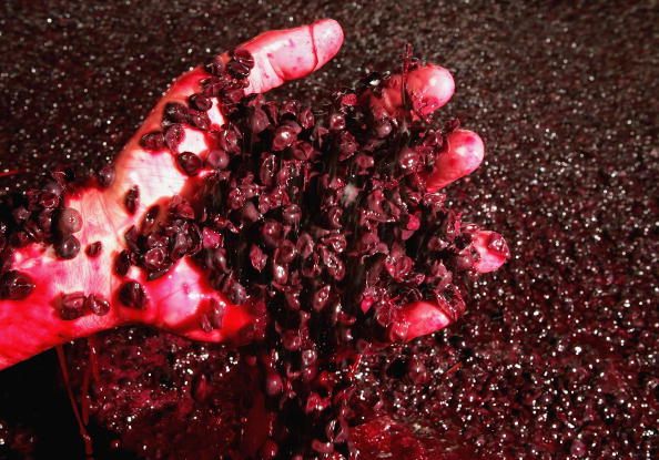 Red Wine「Australian Wine Grape Growers Faced With Oversupply」:写真・画像(9)[壁紙.com]