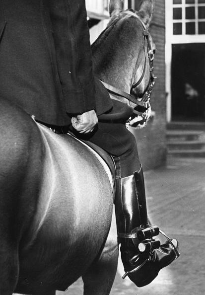 Horseback Riding「Footlights」:写真・画像(15)[壁紙.com]