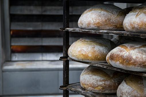 Oven「Trays of bread in a bakery」:スマホ壁紙(18)