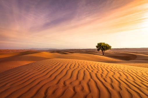 寂しさ「砂漠の夕日」:スマホ壁紙(10)