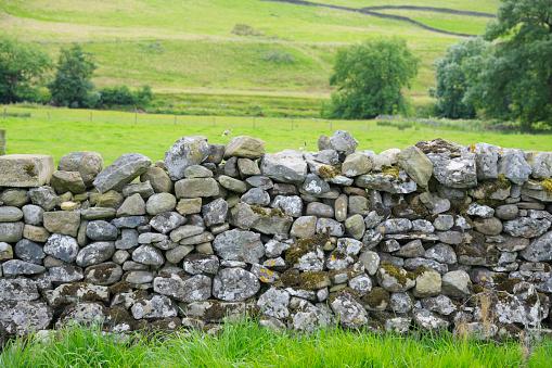Stone Wall「Dry Stone Wall in Yorkshire Dales」:スマホ壁紙(8)