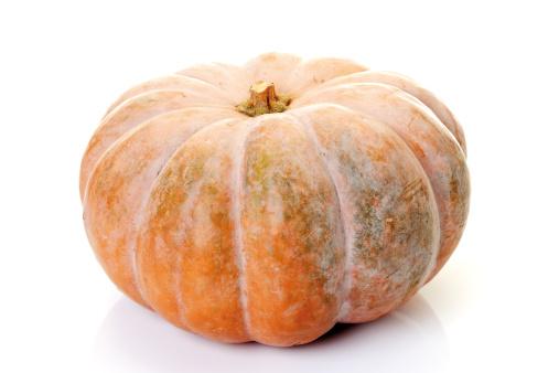 Pumpkin「Pumpkin Muscade de Provence, close-up」:スマホ壁紙(15)