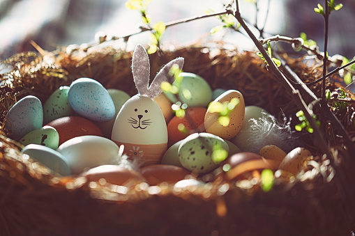 Basket「Easter decoration with crafted Easter bunny in the sunny nest」:スマホ壁紙(0)