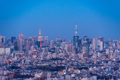 Tokyo Tower「Tokyo Tower and Tokyo Sky Tree at night」:スマホ壁紙(18)