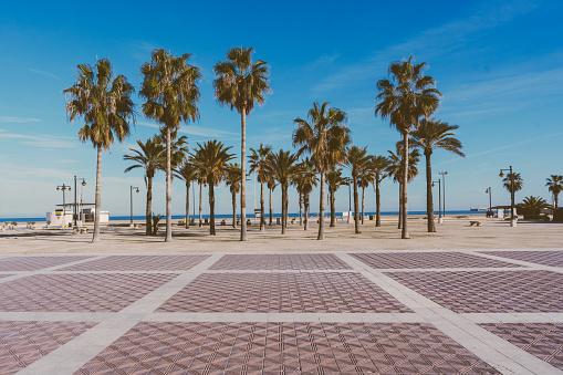Bay of Water「Malvarrosa beach in Valencia,Spain」:スマホ壁紙(6)