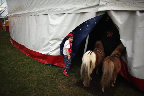 Circus Tent「Bobby Roberts Super Circus Rolls Into Town After Animal Cruelty Scandal」:写真・画像(10)[壁紙.com]