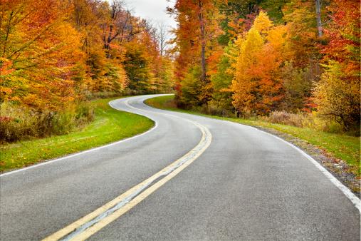 Progress「Autumn Winding Road Flanked by Brilliant Foliage」:スマホ壁紙(11)