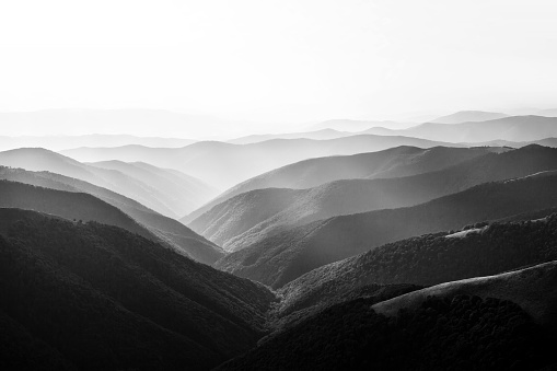 Ecosystem「Mountain landscape」:スマホ壁紙(1)