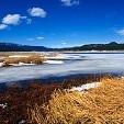 アパッチシトグリーブス国有林壁紙の画像(壁紙.com)