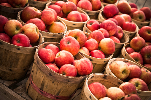 Basket「Numerous Baskets of Apples」:スマホ壁紙(4)