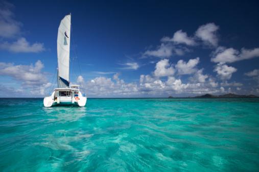 Catamaran「Catamaran boat on open water shot midday」:スマホ壁紙(4)