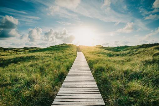 Footpath「Way through the dunes」:スマホ壁紙(19)