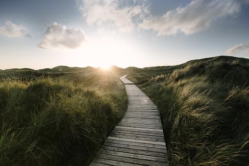 Sea「Way through the dunes」:スマホ壁紙(4)