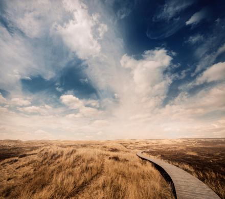 Footpath「Way through the dunes」:スマホ壁紙(8)