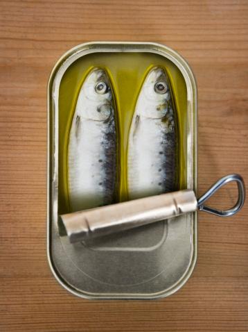 背景「Two sardines in a tin」:スマホ壁紙(9)