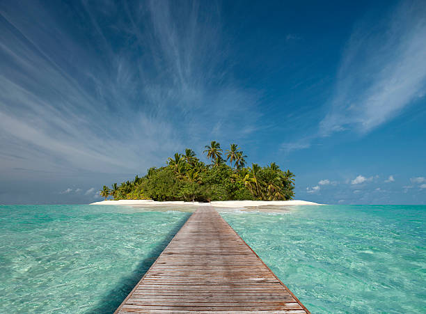 Wooden dock walkway to tropical island:スマホ壁紙(壁紙.com)