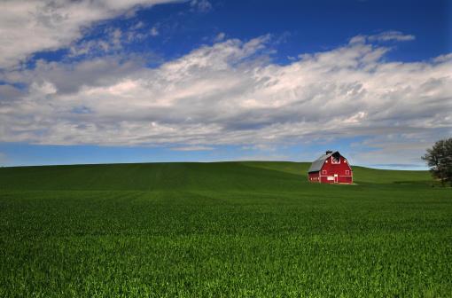 Agricultural Building「Palouse barn」:スマホ壁紙(12)