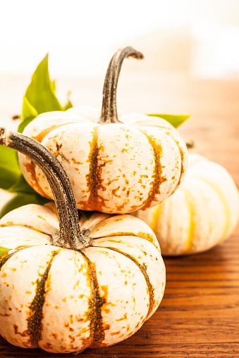 November「Autumn pumpkins background.」:スマホ壁紙(14)