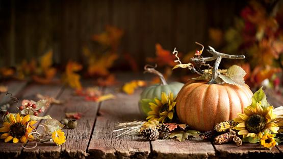 かえでの葉「木の秋のカボチャの背景」:スマホ壁紙(13)