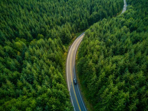 Driving Through Forest - Aerial View:スマホ壁紙(壁紙.com)