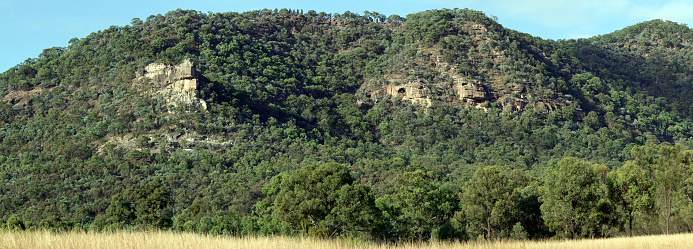 Escarpment「Forested escarpment of Yengo National Park NSW」:スマホ壁紙(4)