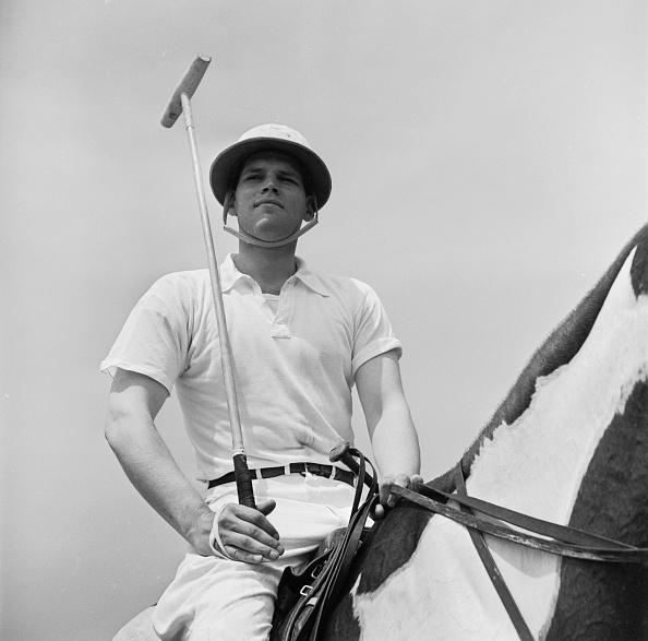 Horse「Polo Player」:写真・画像(2)[壁紙.com]