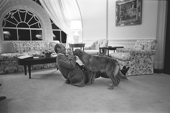 Pets「At Home In The White House」:写真・画像(15)[壁紙.com]