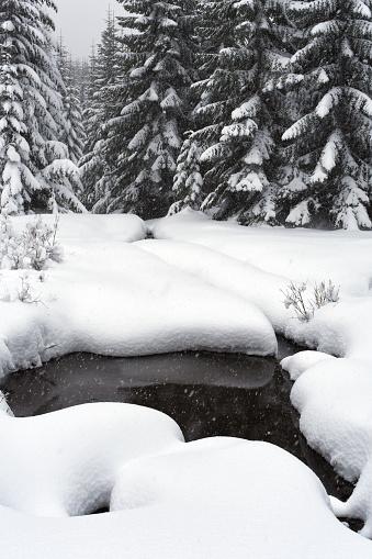 クリスタル山「Scenic winter landscape, Crystal Mountain area, Washington State, USA」:スマホ壁紙(5)