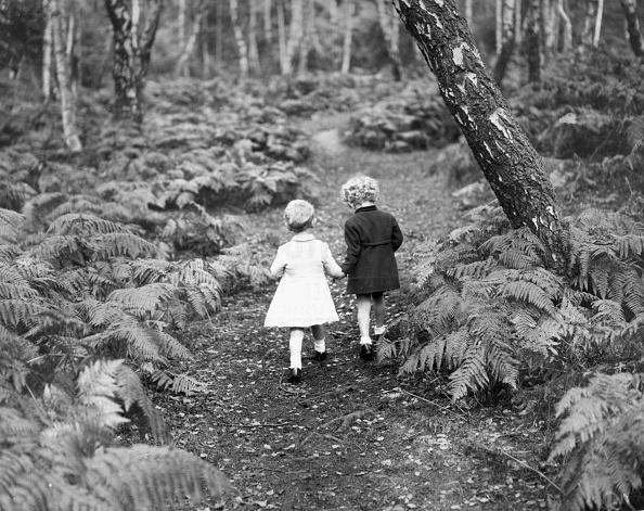 Boys「Babes In The Wood」:写真・画像(3)[壁紙.com]