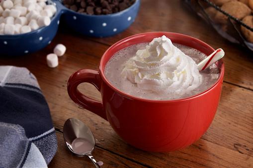 Candy Cane「Mug of steamy Hot Chocolate and Whipped Cream」:スマホ壁紙(11)
