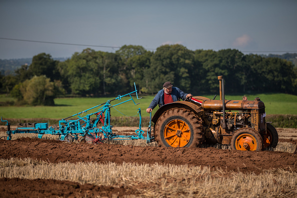 Tractor「The 2015 Mendip Ploughing Society Competition」:写真・画像(6)[壁紙.com]