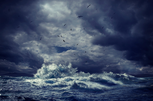Flock Of Birds「Birds flying over rough ocean waves」:スマホ壁紙(5)