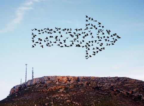Conformity「Birds flying in arrow formation above aerials.」:スマホ壁紙(14)